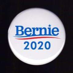 Bernie 2020 (Explicit)