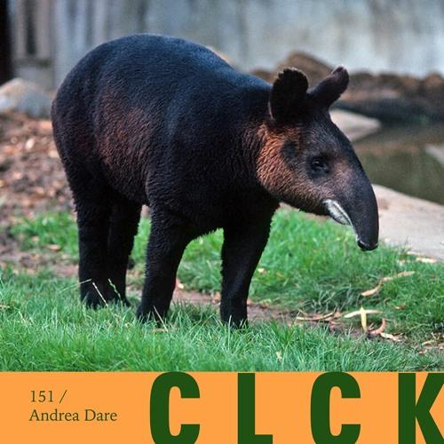 CLCK Podcast 151   Andrea Dare