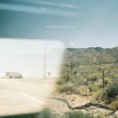 moty & Arros - Into the wild