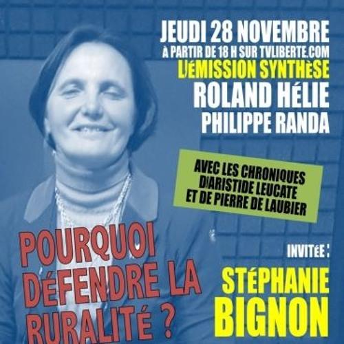 Pourquoi défendre la ruralité ? - Synthèse avec Stéphanie Bignon du 29/11/19