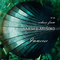 Echoes from Najesh & Artišoko - Immerse
