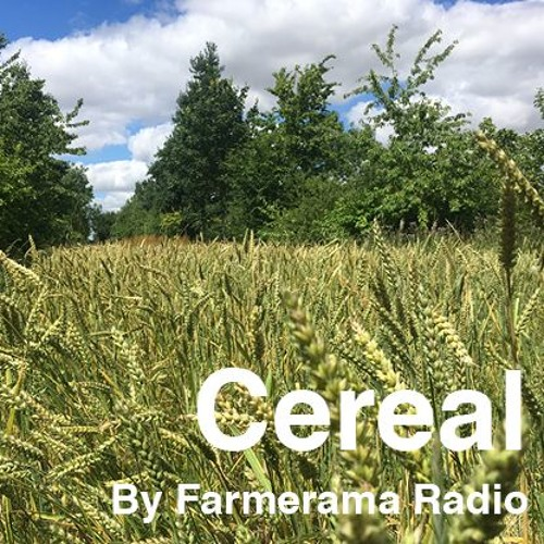 'Cereal', Episode 1: Flour, water, salt