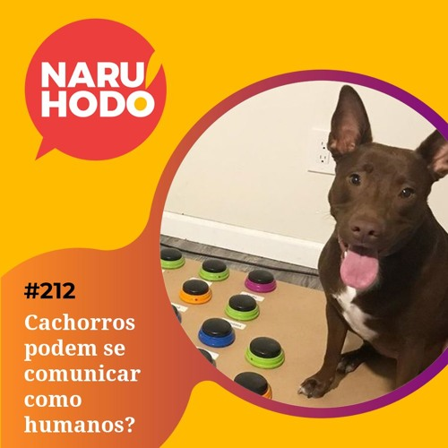 Naruhodo #212 - Cachorros podem se comunicar como humanos?