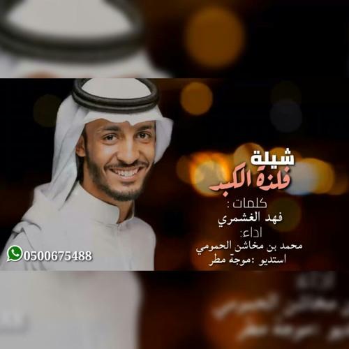 فلذة الكبد / محمد بن مخاشن