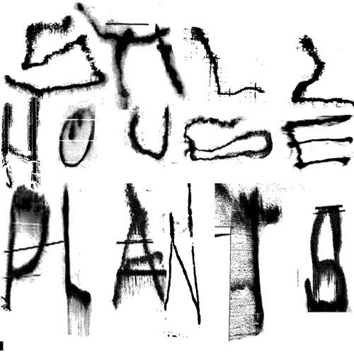 Still House Plants - En Vivo Open BYM Records, 10 de Noviembre 2019