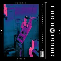 PREMIERE:Le Jeune Flück - Lies And Deception (DJCJ Remix) |  Disbelieve(DMC008)