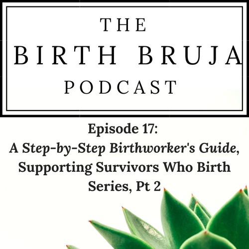 Ep. 17: A Step-by-Step Birthworker's Guide, Supporting Survivors Who Birth Series, Pt. 2