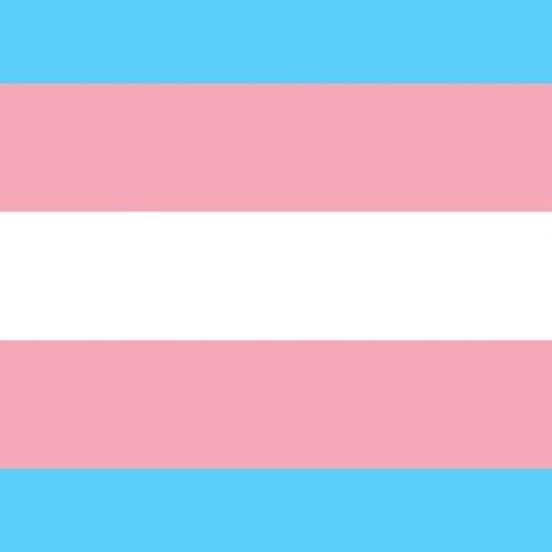 Human Rights @ De Krook - De rechten van trans*personen