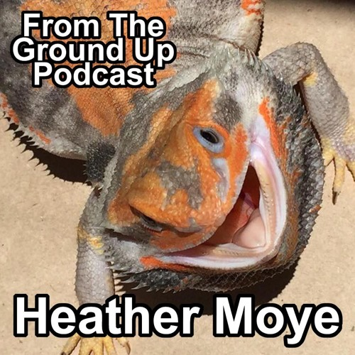Bearded Dragons W/ Heather Moye of Fairytail Dragons