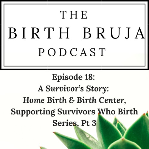 Ep 18: A Survivor's Story: Home Birth & Birth Center, Supporting Survivors Who Birth Series, Pt 3