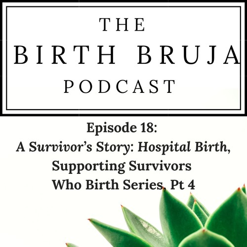 Ep 19: A Survivor's Story: Hospital Birth, Supporting Survivors Who Birth Series, Pt 4
