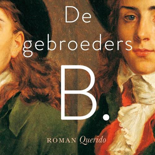 Boek Gebroeders B – Steffie Van Den Oord