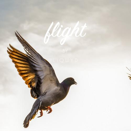 Flight (Free download)