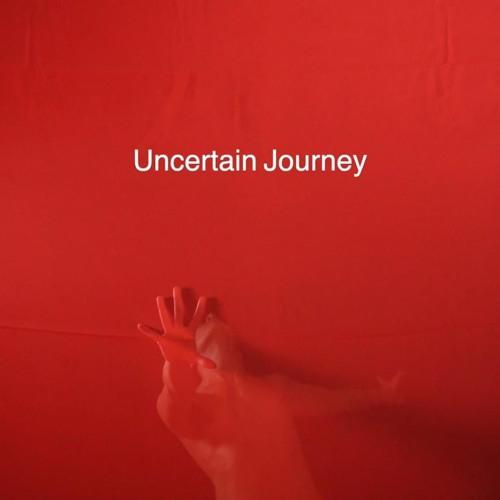 Uncertain Journey (excerpt)