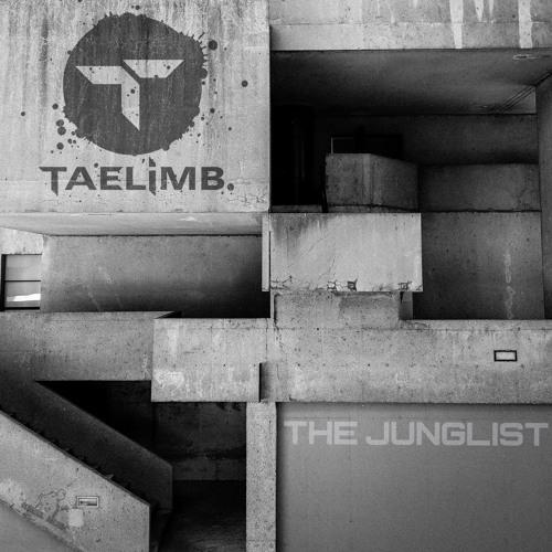 Premiere: Taelimb 'The Junglist' [Rebel Music]