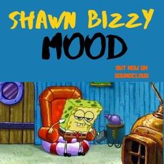 Shawn Bizzy - Mood