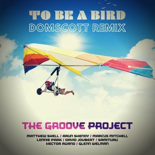 The Groove Project - To Be A Bird - (Domscott remix)