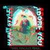 Download Mp3 Harry Styles - Adore You [Terry Kingsley Remix]
