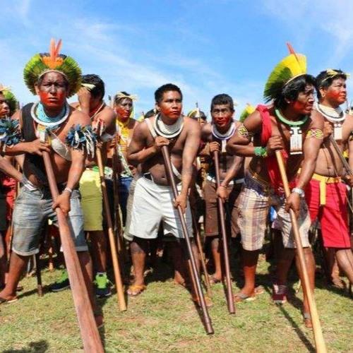Governo Bolsonaro tem responsabilidade em novo atentado contra indígenas Guajajaras