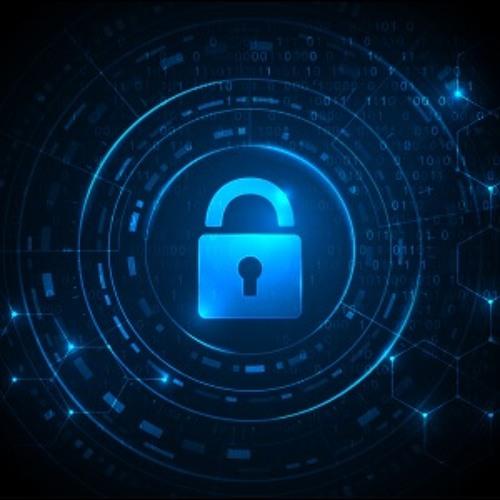Caitlin Mulholland: Privacidade e Sociedade Digital