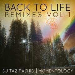 DJ Taz Rashid & Momentology - Awake And Alive (SriKala Remix) [Instrumental]