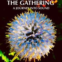 The Gathering Interviews- Tuesday Velasco