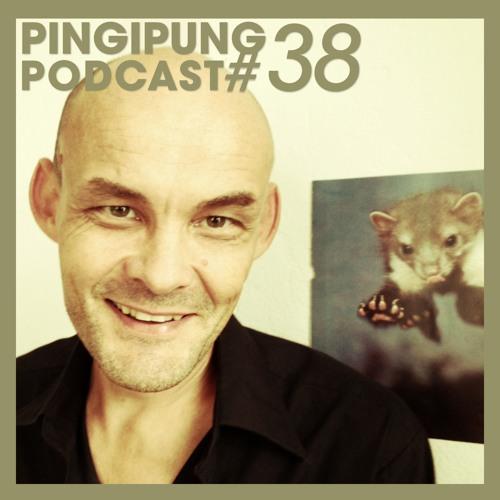 Pingipung Podcast 38: F.S.Blumm - 26 Guitar Goodies (reupload)