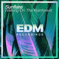 Sunflare - Walking On The Rainforest (Original Mix) Artwork