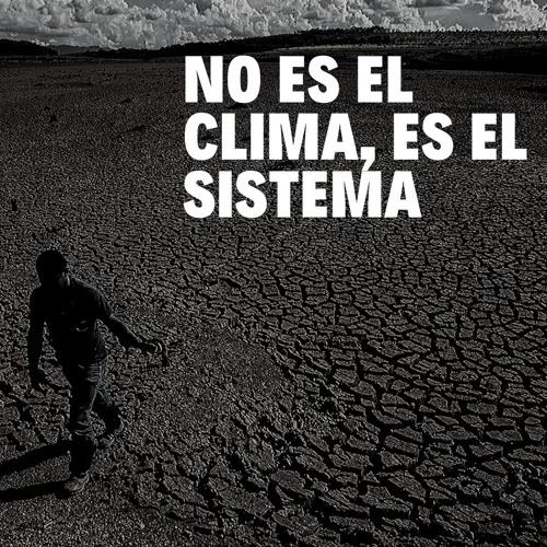 Entrevista a Carlos Vicente - Acción por la Biodiversidad / GRAIN