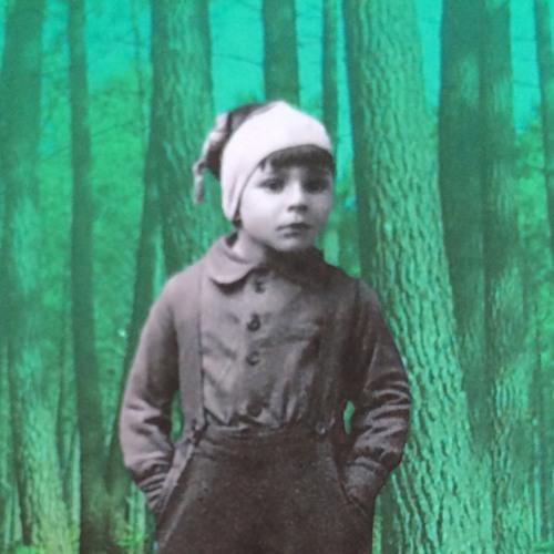 « Silences En Forêt » sur RCF