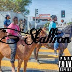 Stallion- Balo x Luk3