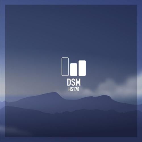 HS 178 | DSM
