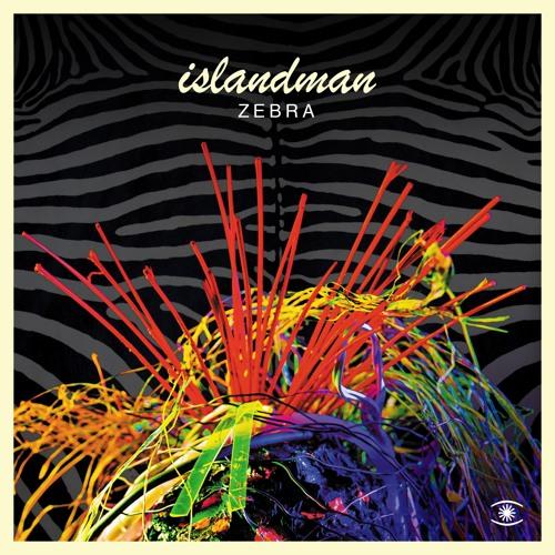 islandman - Zebra