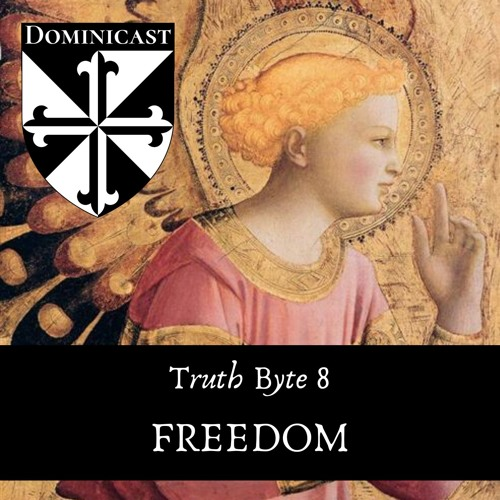 Freedom - Truth Byte 8