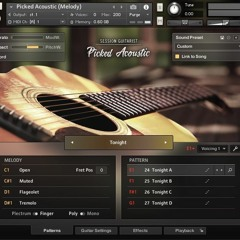 Acoustic Guitar Strummed Acoustic 2 & Picked Acoustic
