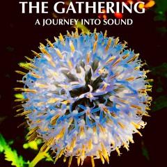 The Gathering Interviews- Jen Moore