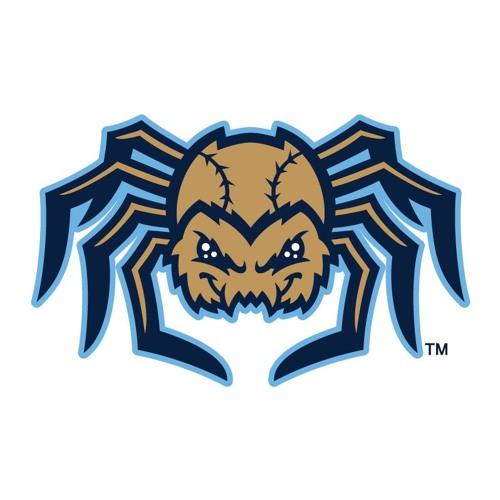 Dock Spiders Web Update 1
