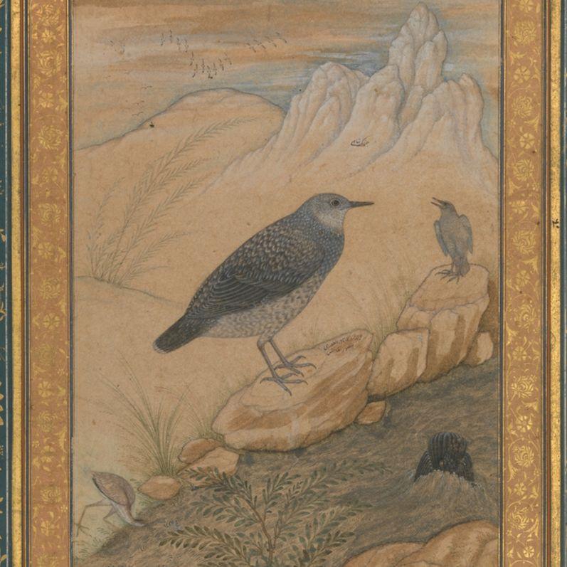 Mughal Persian Poetry and Persianate Cultures | Sunil Sharma