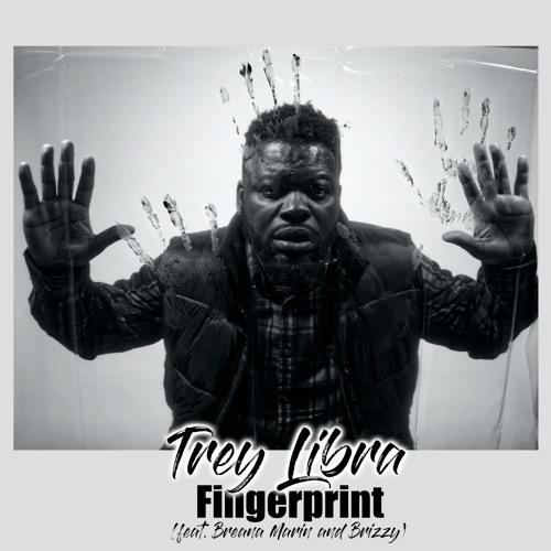 Fingerprint (feat. Breana Marin And Brizzy)