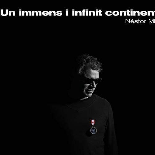 Néstor Mir - Inmens infinit continent