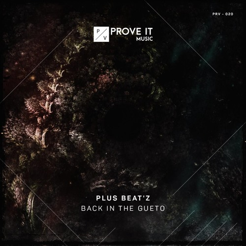 [OUT NOW] PRV020 - Plus Beat'Z - Back In The Gueto