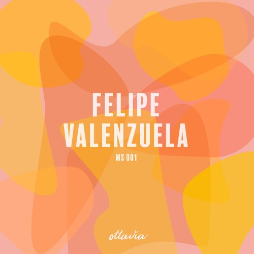 MS001 - Felipe Valenzuela