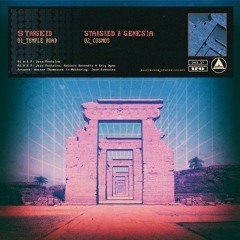 StarSeed - Temple Road (Sourcode Transmissions)