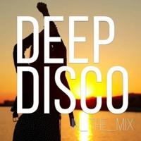 Deep Disco Records Mix #38