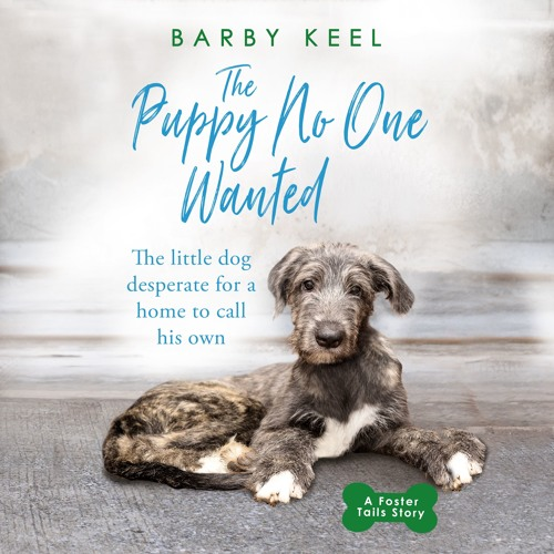 The Puppy No One Wanted by Barby Keel, Read by Maggie Mash