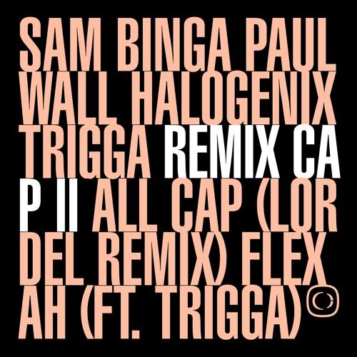 If The Cap Fits: Remixed Part 2 (OUT NOW) [Sam Binga, Halogenix, Trigga, Lordel, Paul Wall]
