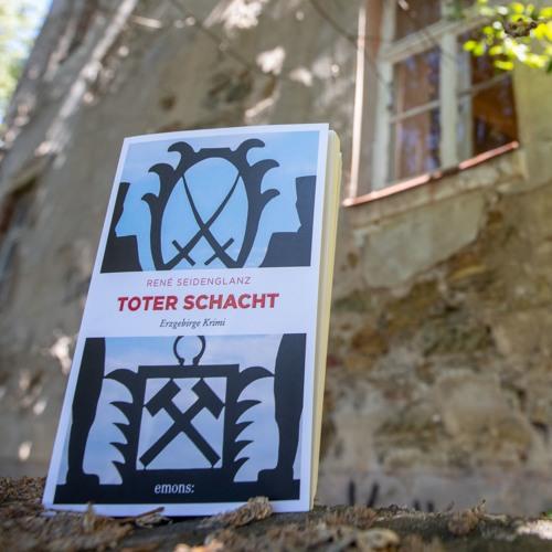 """René Seidenglanz liest aus seinem Roman """"Toter Schacht"""""""