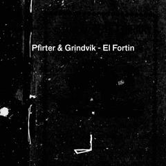 Pfirter & Grindvik - El Fortin   LEYLA014
