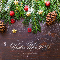 Winter Mix 2019