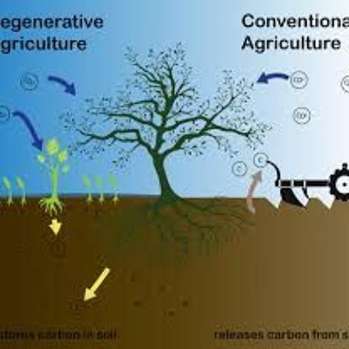 Regenerative Agriculture:  the next goal for USDA organic?